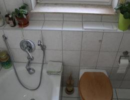 WC ohne Toilettenpapier viele kleine dinge