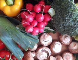 Lebensmittelverschwendung viele kleine dinge
